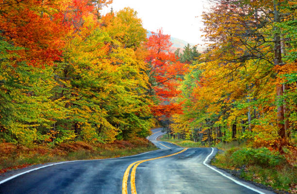 Scenic autumn road in the White Mountians of New Hampshire The White Mountains are a mountain range covering about a quarter of the state of New Hampshire and a small portion of western Maine in the United States. white mountain national forest stock pictures, royalty-free photos & images