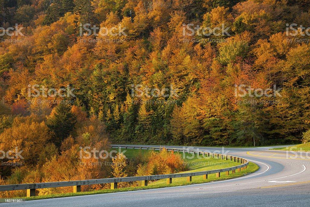 Scenic Autumn Road royalty-free stock photo