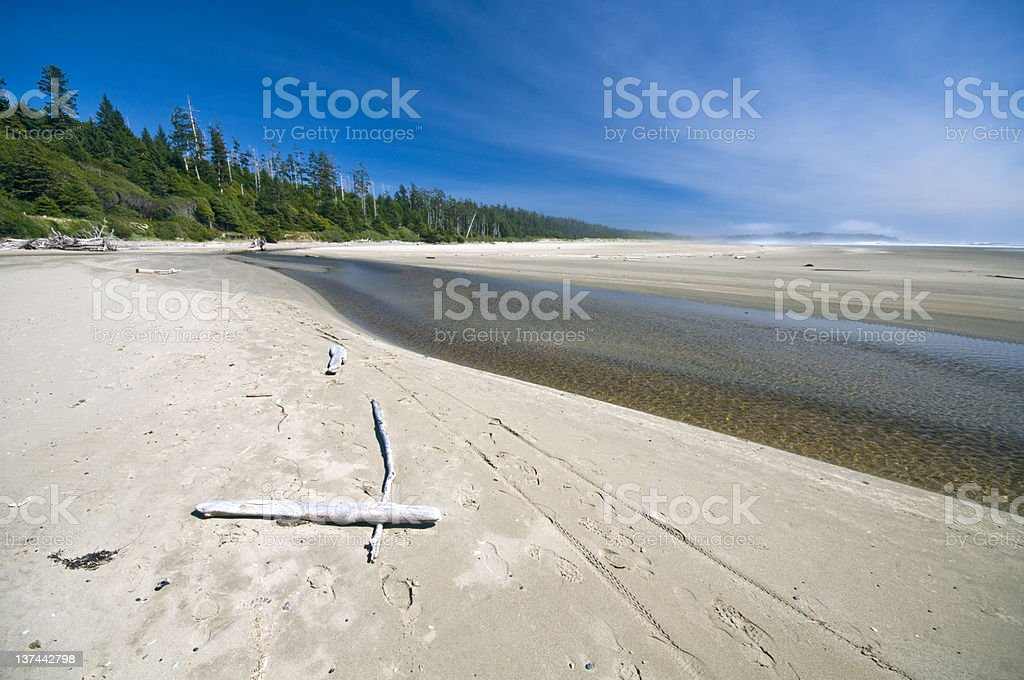Scenic beach at Pacific Rim national Park, Vancouver Island, Canada stock photo