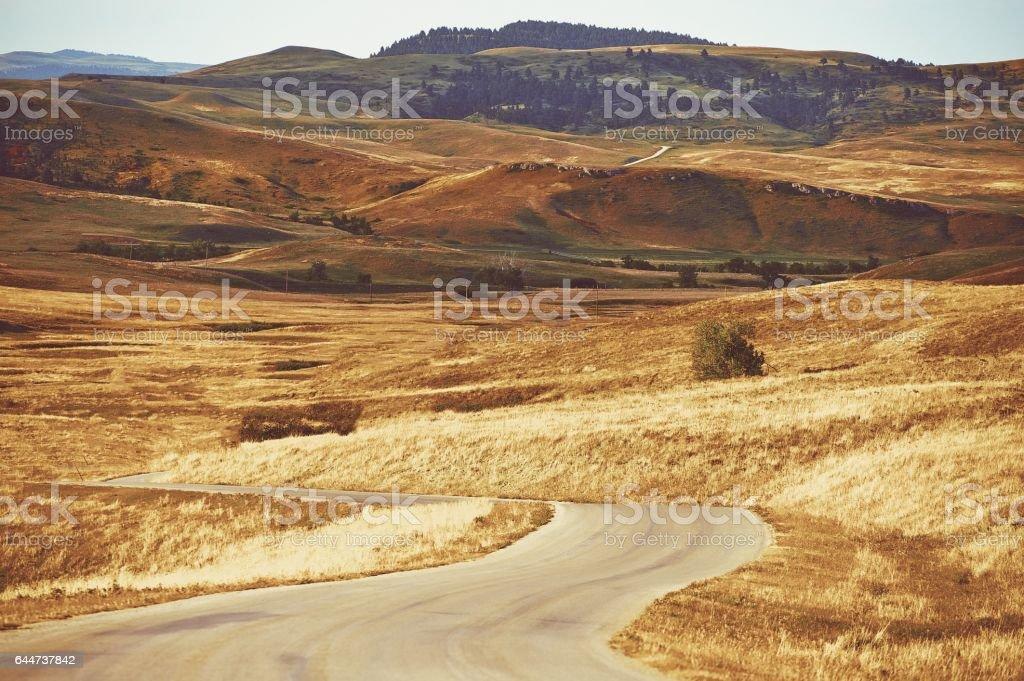 Scenic Black Hills South Dakota Summer Landscape. South Dakota, United States. stock photo
