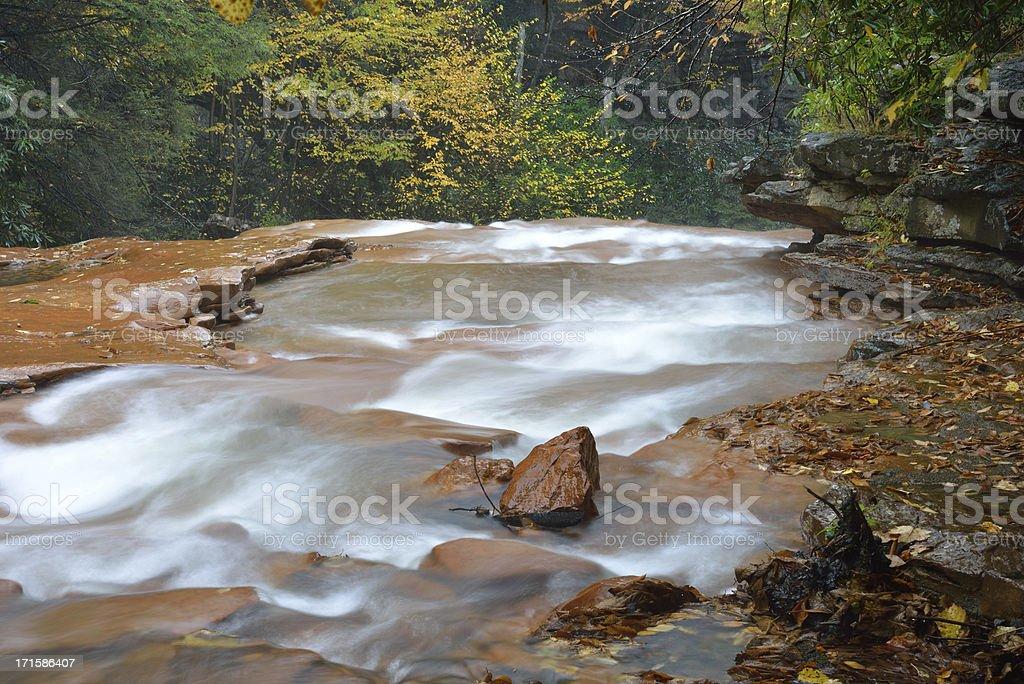 Scenic Blackwater River royalty-free stock photo