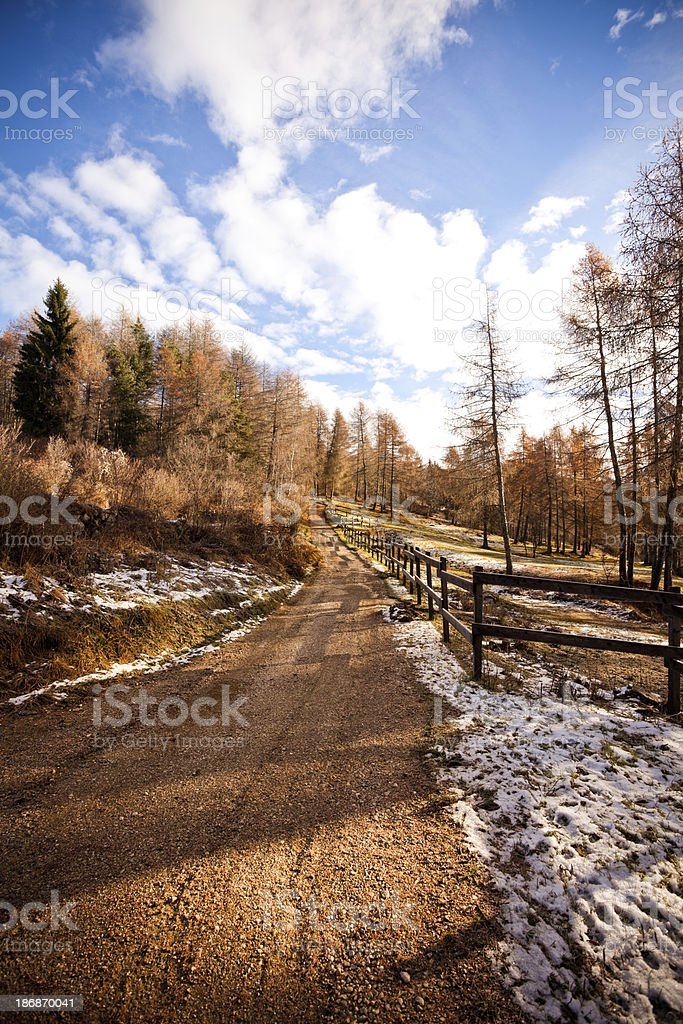 Scenic Country Road in Autumn royalty-free stock photo