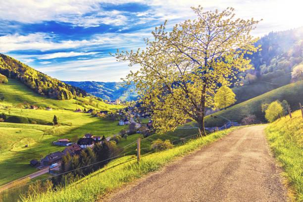 scenic countryside landscape: picturesque summer valley in germany - sommerferien baden württemberg stock-fotos und bilder