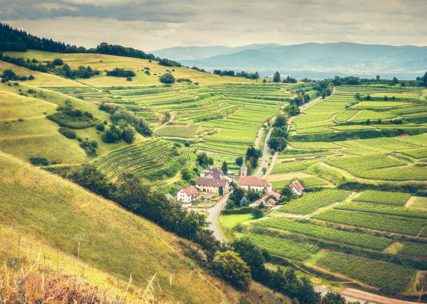 Scenic countryside landscape with historic village, traditional houses and vineyards. Germany, Black Forest – Foto