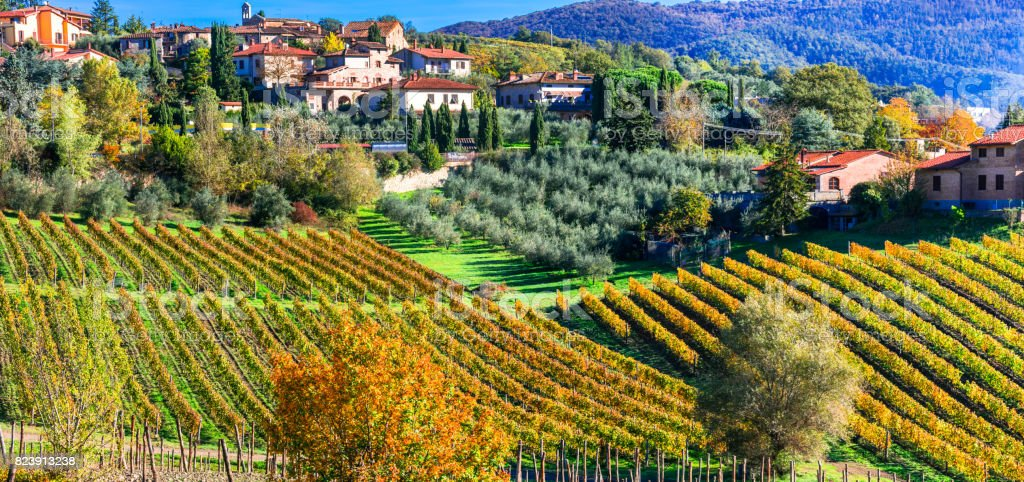 Scenic countryside with vineyards in autumn colors. Tuscany, Beautiful Italy series stock photo