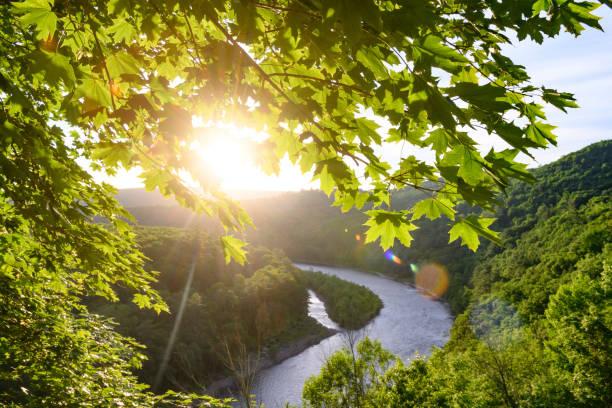 paysage scénique de fleuve du delaware dans les montagnes de catskill et la ligne d'état de new york - rivière delaware photos et images de collection