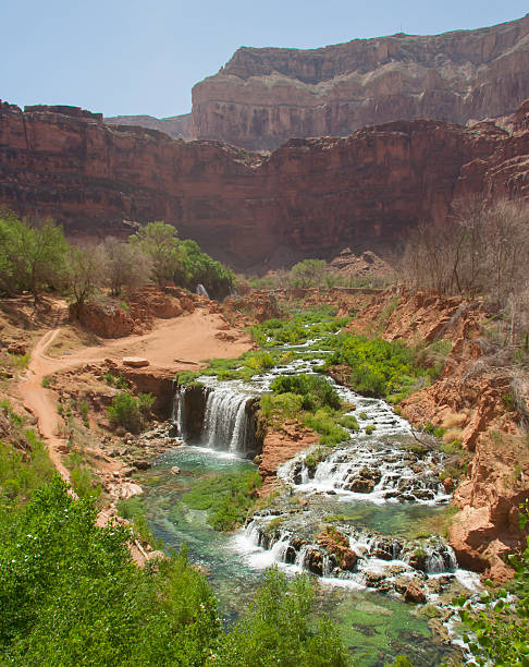 Scenic Desert Oasis stock photo