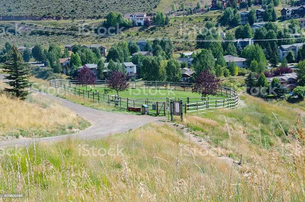 Scenic Dog Park in Avon, Colorado stock photo