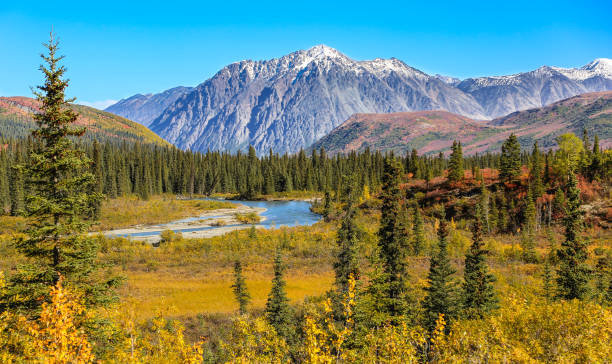Scenic fall landscape with lake and snow-capped mountains in Denali National Park – Foto