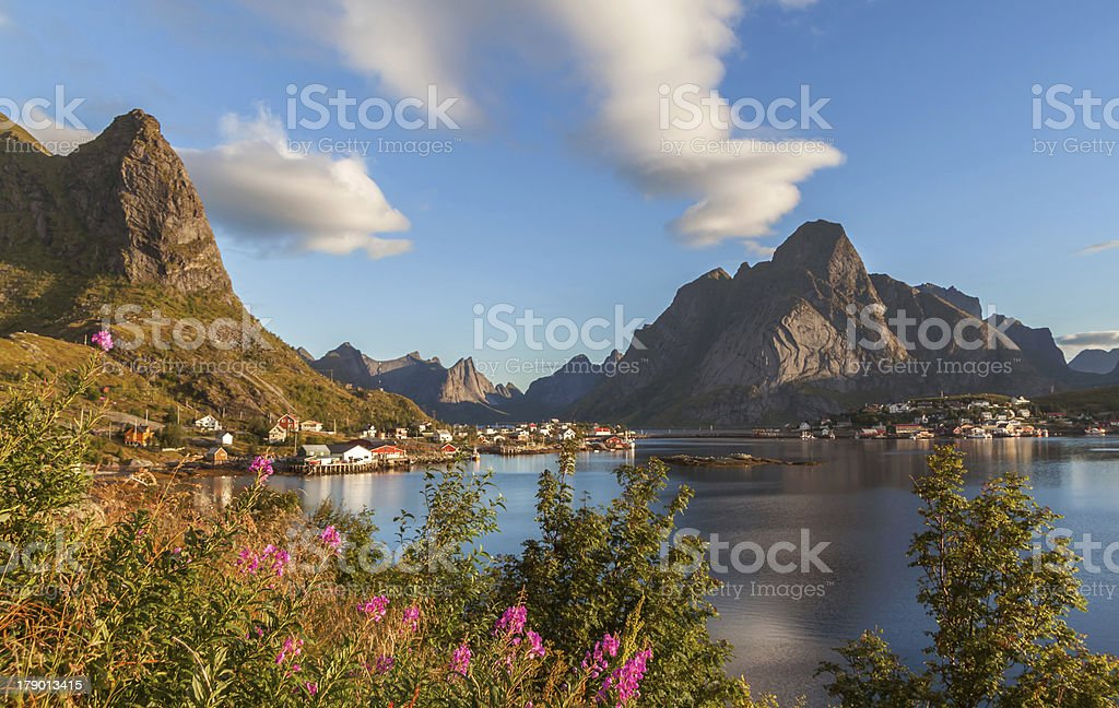 Scenic fjord on Lofoten islands in Norway. royalty-free stock photo