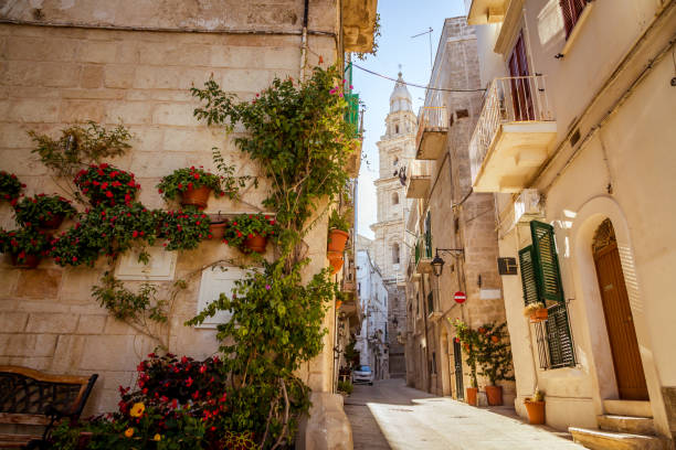 Scenic green flowers on the street corner and cathedral tower in Monopoli, Italy stock photo