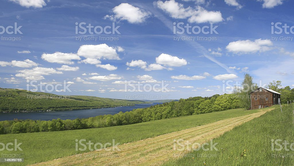 Scenic Green Riverside Pasture stock photo