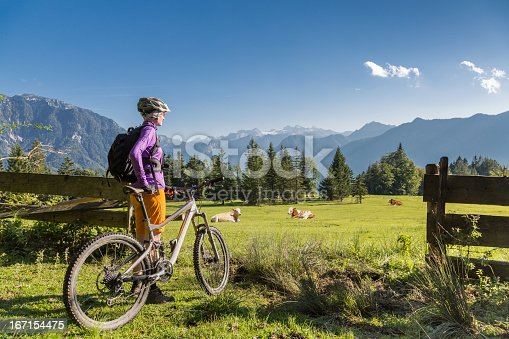 A female mountainbiker is enjoying the idyllic view of the glaciated Dachstein Mountains (2995 mt., 9826 ft.) behind a scenic pasture with resting cattles. The Salzkammergut is a resort area located in Austria. It stretches from City of Salzburg to the Dachstein mountain range, spanning the federal states of Upper Austria (80%), Salzburg (7%), and Styria (13%). The name Salzkammergut means