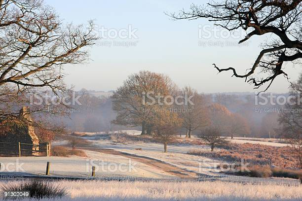 Photo of Scenic image of Southeast England under frost