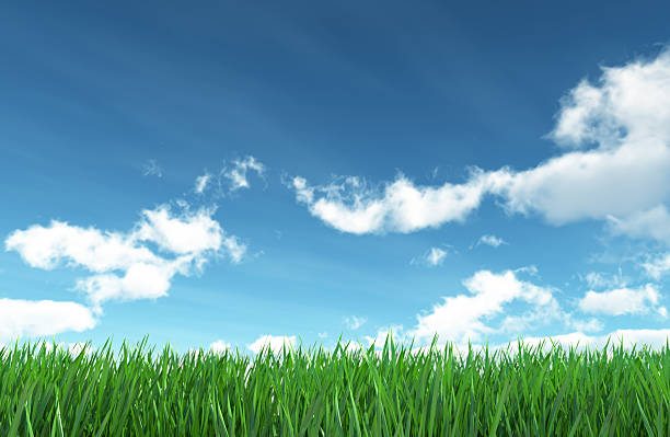 Scenic image of the sky and the green grass below stock photo
