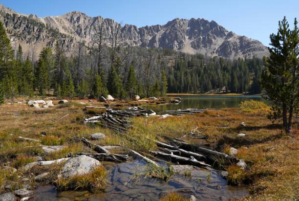 A scenic lake in central Idaho stock photo