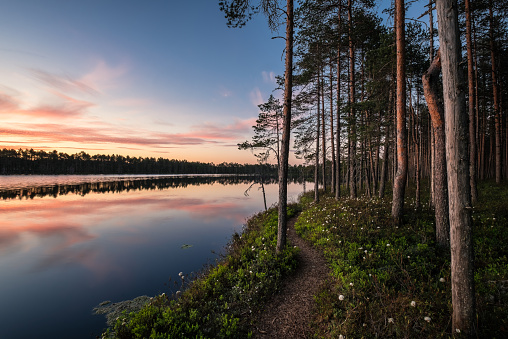 Scenic lake view with idyllic path and sunset at peaceful evening in National Park, Finland