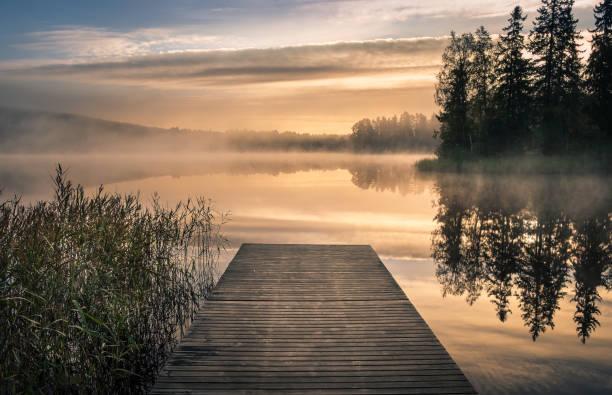 natursköna landskap med morgon humör och soluppgång på hösten i finland - nature foggy calm bildbanksfoton och bilder