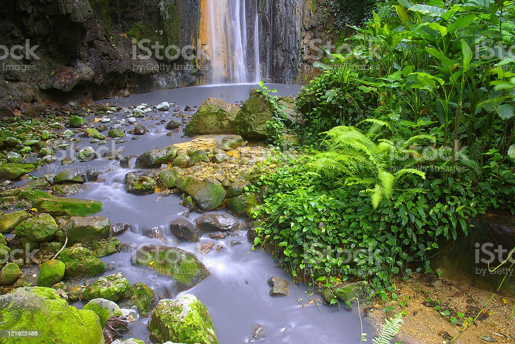 scenic lush tropical rainforest waterfall environment stock photo