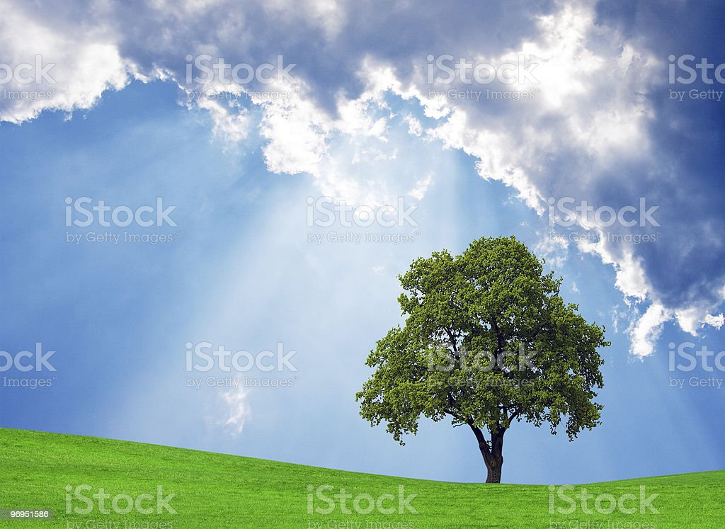 Scenic Nature Background royalty-free stock photo