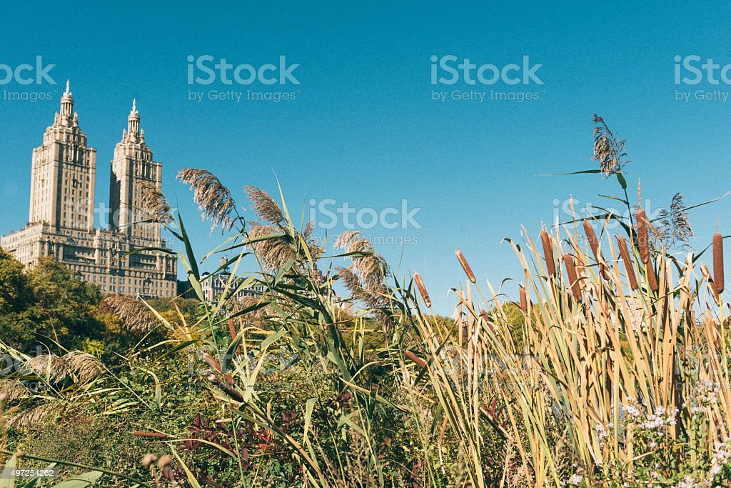 Scenic NYC Autumn Landscape View from Central Park stock photo