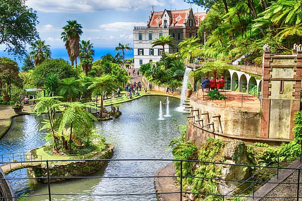 paisagem de monte palácio jardim tropical, ilha da madeira - funchal madeira imagens e fotografias de stock