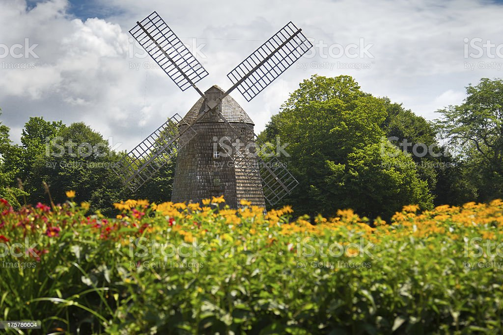 Scenic old fashioned windmill amidst a field of flowers stock photo