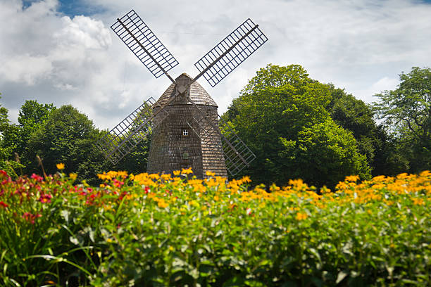 Scenic old fashioned windmill amidst a field of flowers Landmark windmill at Water Mill Long Island, NY amidst stock pictures, royalty-free photos & images