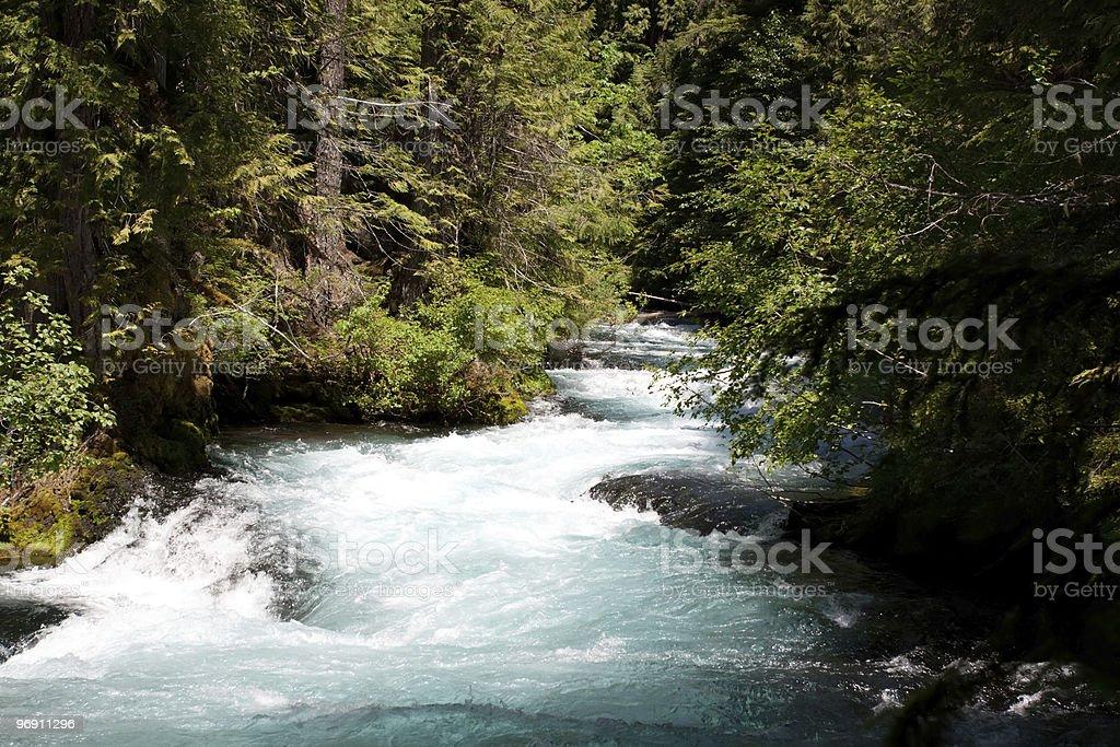 Scenic Oregon creek royalty-free stock photo