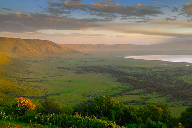Scenic panorama of a crater in Tanzania at sunset The west rim of the Ngorongoro crater at sunrise in Tanzania ngorongoro conservation area stock pictures, royalty-free photos & images