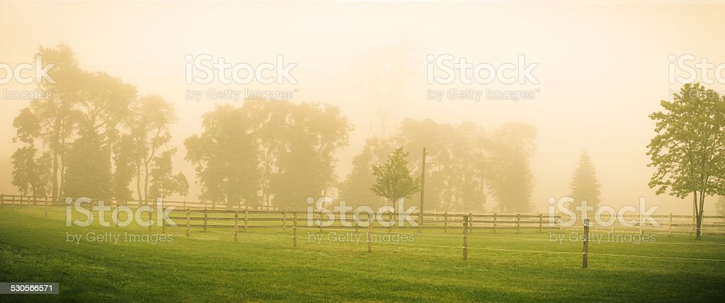 Scenic Panoramic Fenced Farm Field with Fog and Trees stock photo