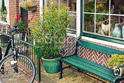 Scenic part of traditional house in small European town. Netherlands. Europe. Many flowers in pots, bicycle and  charming domestic cat in window.