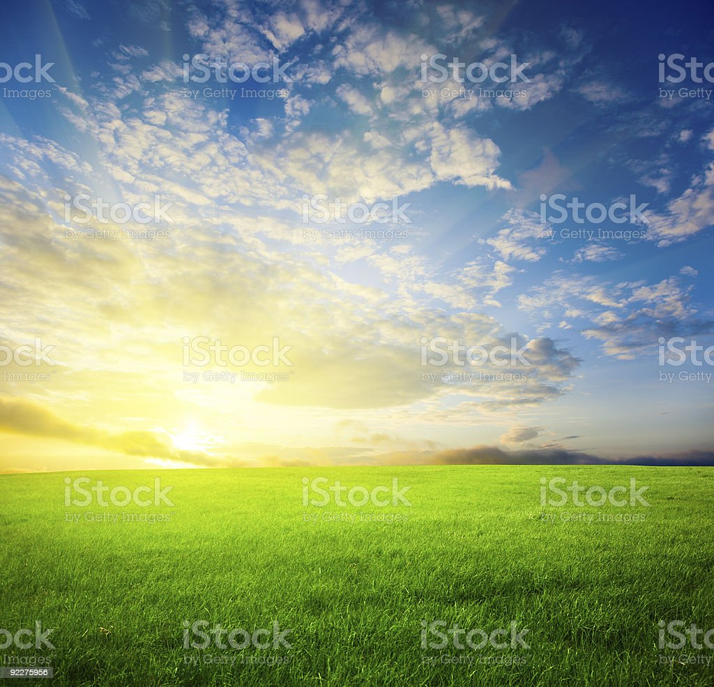 Scenic photo of a grassy field at sunset royalty-free stock photo