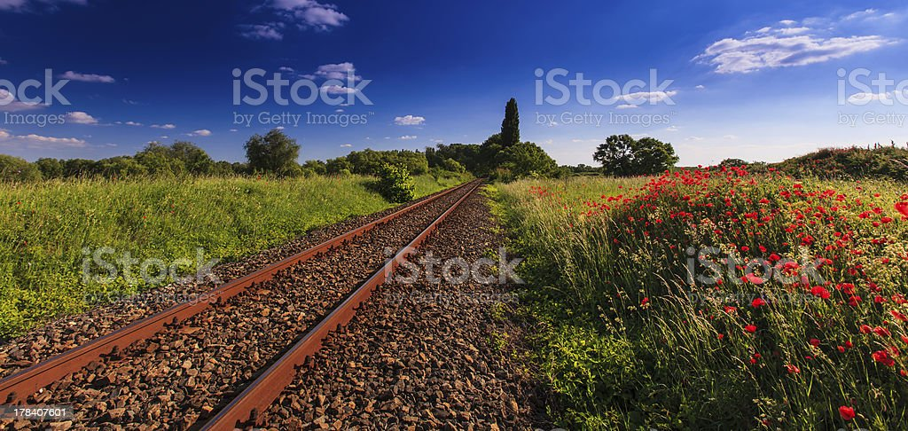 Scenic railroad in rural area royalty-free stock photo
