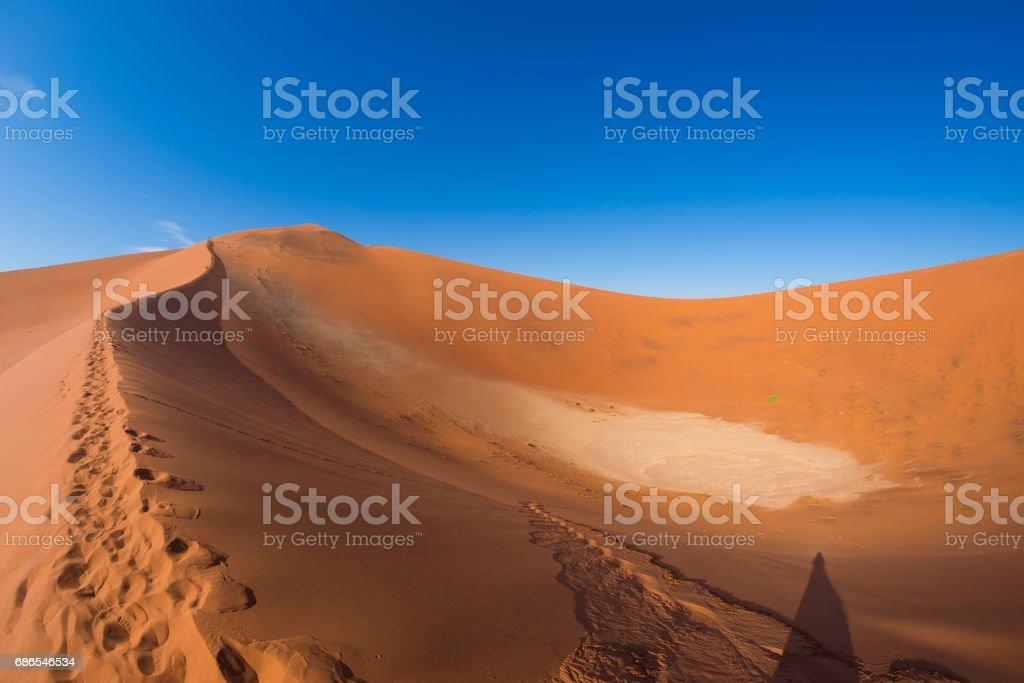 Scenic ridges of sand dunes in Sossusvlei zbiór zdjęć royalty-free