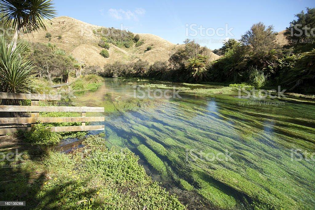 Scenic River stock photo