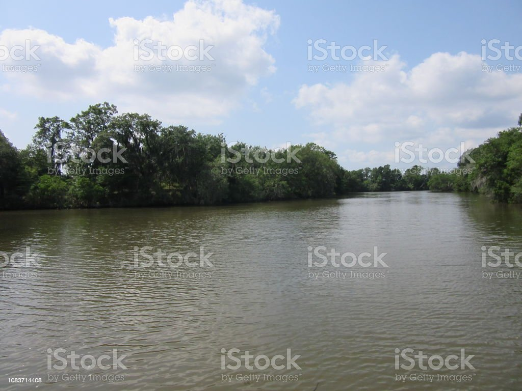 Scenic River View with Trees stock photo