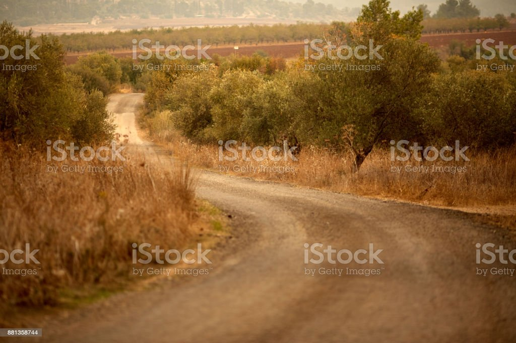 Scenic Road Drive Pass Beautiful Panoramic Valley South Island stock photo