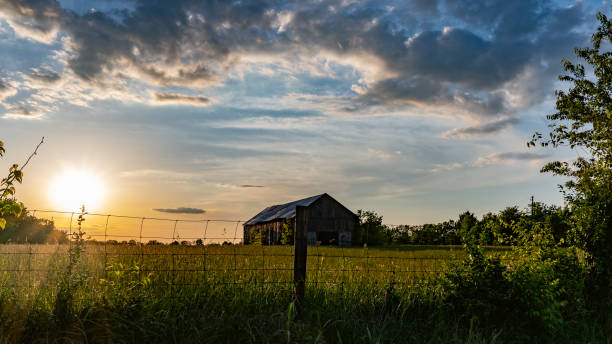 Scenic rural countryside with old barn in a field Rural countryside landscape of an old barn in a hay field with the sun to the left and a hog-wire fence in the foreground. southern usa stock pictures, royalty-free photos & images