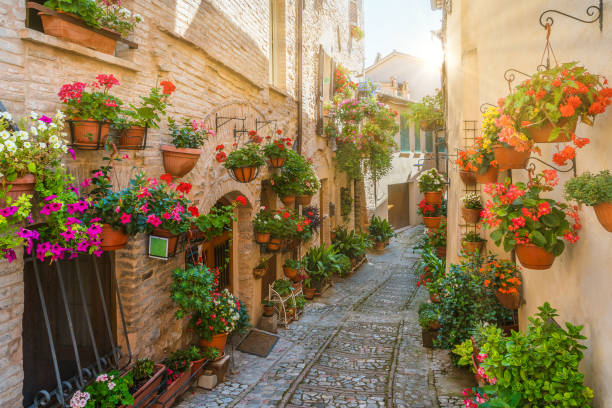 Scenic sight in Spello, flowery and picturesque village in Umbria, province of Perugia, Italy. Scenic sight in Spello, flowery and picturesque village in Umbria, province of Perugia, Italy. umbria stock pictures, royalty-free photos & images