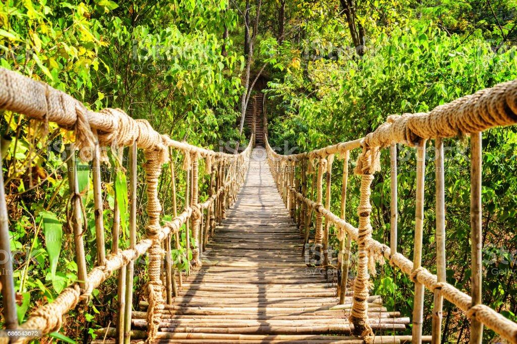 Vackra enkla hängbron över ravinen royaltyfri bildbanksbilder