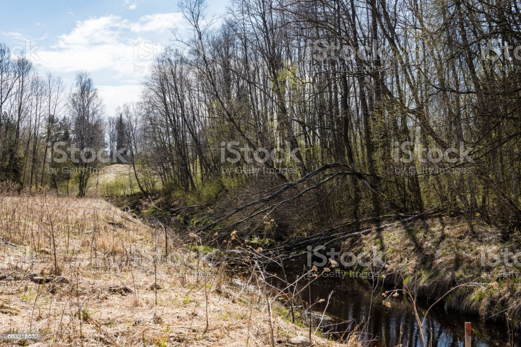 scenic spring colored river in country royalty-free stock photo