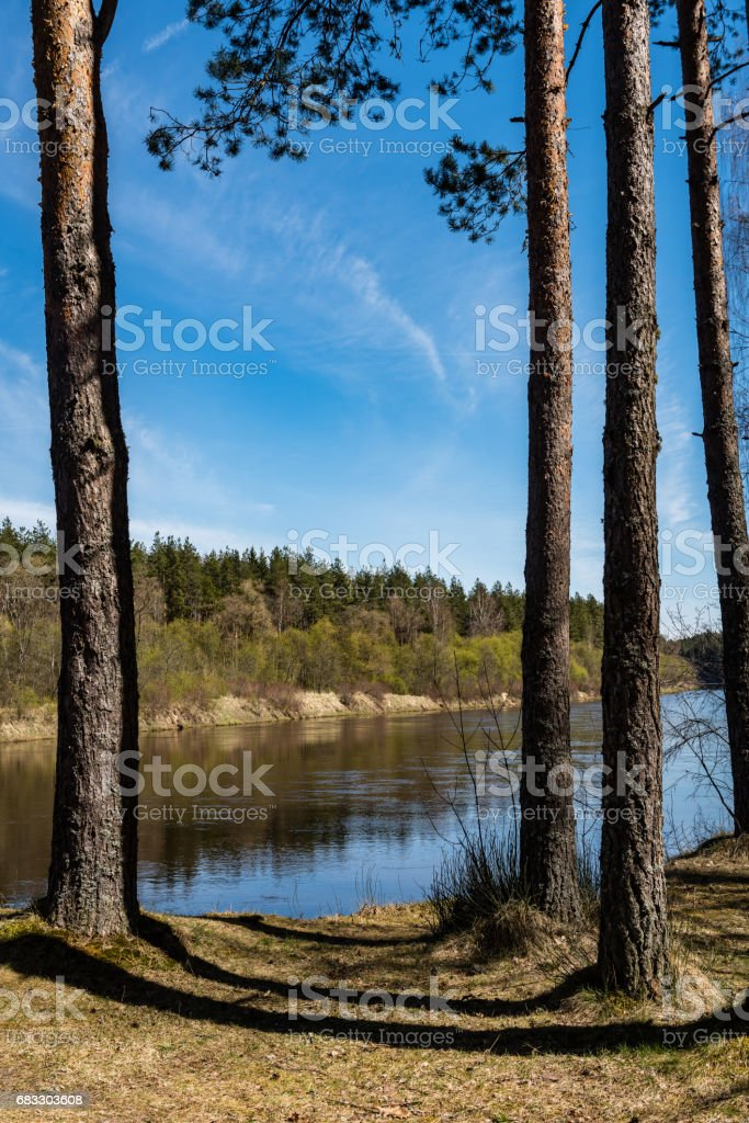 scenic spring colored river in country foto stock royalty-free