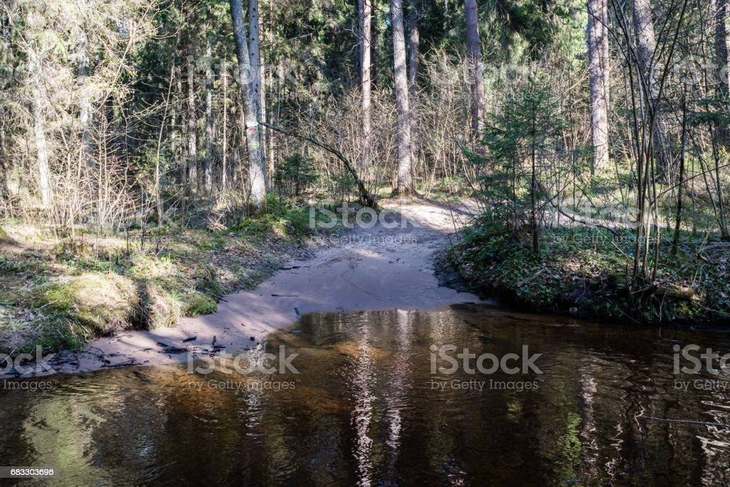 scenic spring colored river in country photo libre de droits