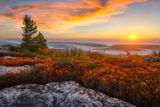 Scenic sunrise and autumn foliage, west Virginia. stock photo