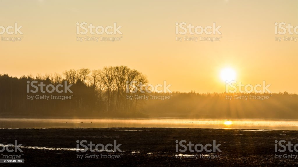 Scenic sunrise over a forest at pond in black and orange stock photo
