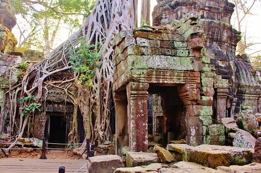 istock Scenic Ta Prohm Temple at Riem Reap 1206609474