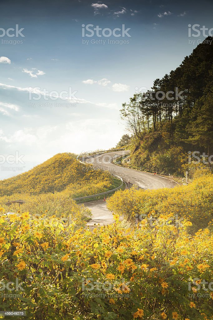Scenic Thailand Landscape royalty-free stock photo