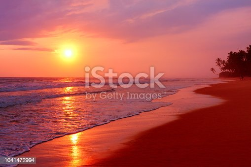 Scenic tropical beach with palm trees at sunset background,   Sri Lanka.