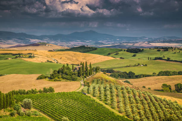 Scenic Tuscany landscape at sunset, Val d'Orcia, Italy stock photo